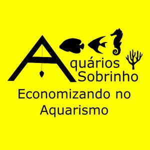 economizando aquarismo dinheiro