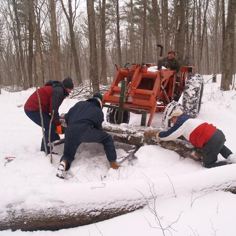 Photo Series: Wisconsin Logging