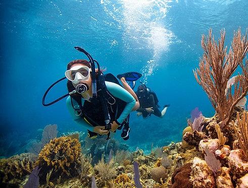 OPEN WATER DIVER PADI  Prácticas y buceos para Certificación de buceo en Cozumel
