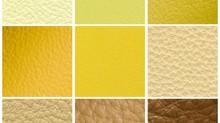 Mellow Yellows