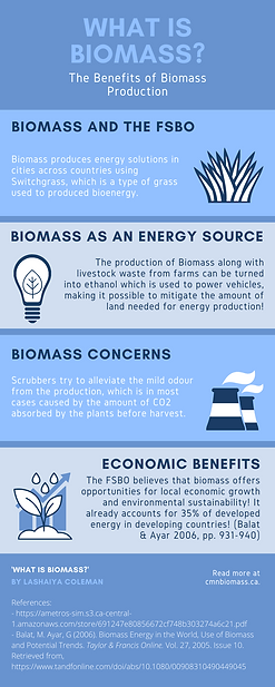 Biomass Infographic .png
