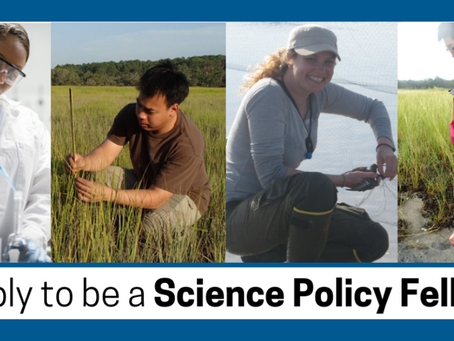 Apply to be a Science Policy Fellow by 3/6/19