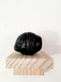 unbaked polymer clay, pine shelf