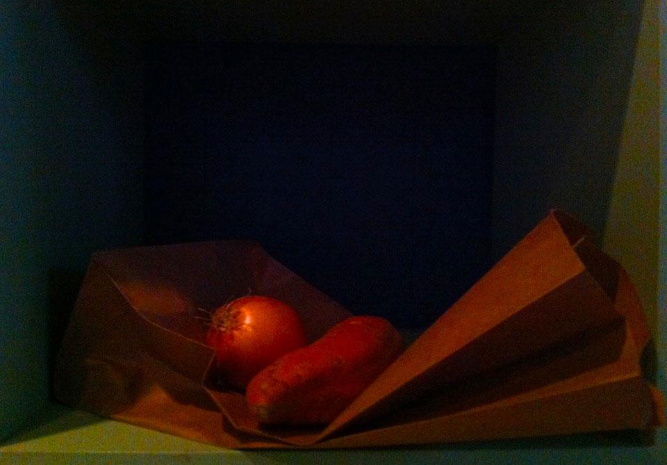 Sculpture with Potato and Onion (after Juan Sanchez Cotan).jpg