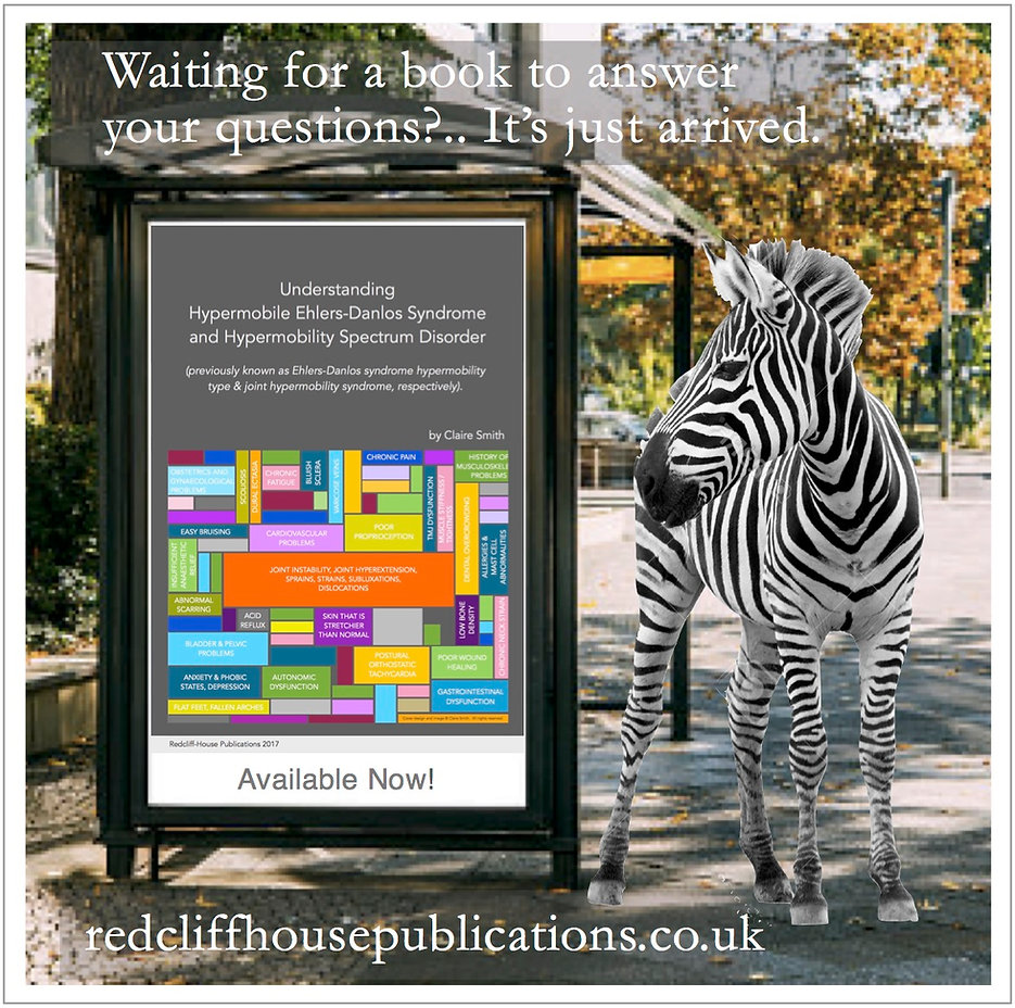 zebra bus stop advert 1.jpg