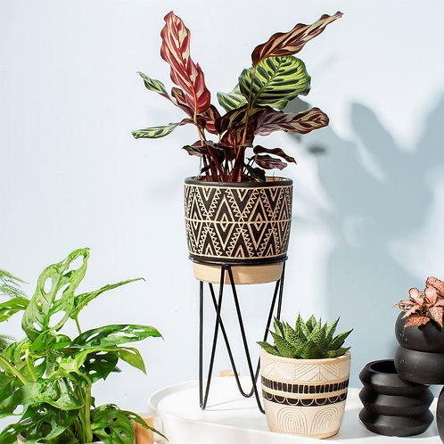 Geo Planter with Stand