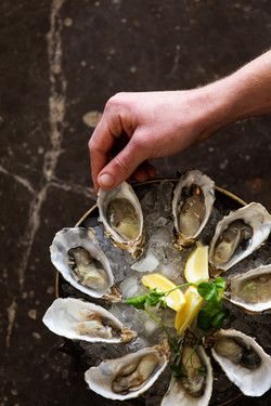 Oyster Club Frdiay