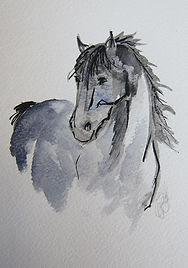 Horse distant.jpg
