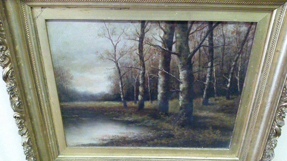 """Stand Of Birch"". American English 1885"