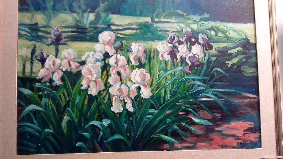 """Irises"" By: J. Wolf"