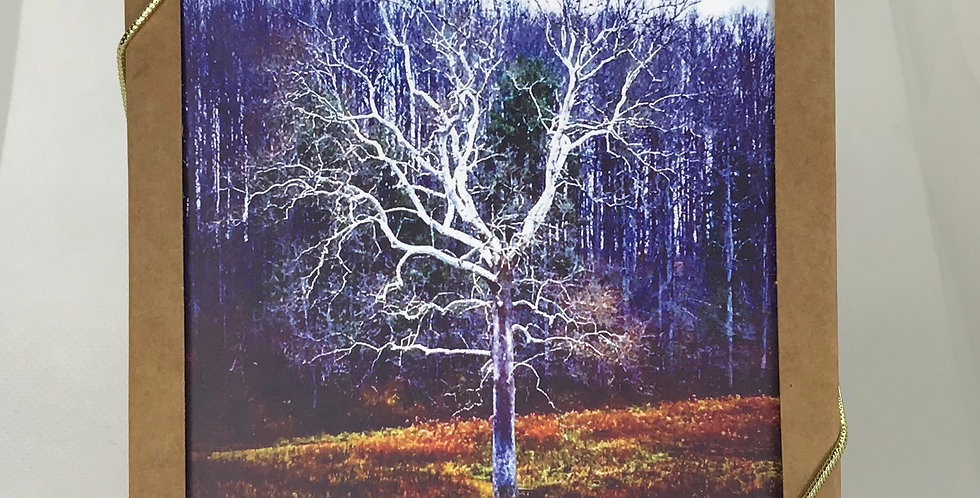 'The White Tree' :  Set of 5 Note Cards