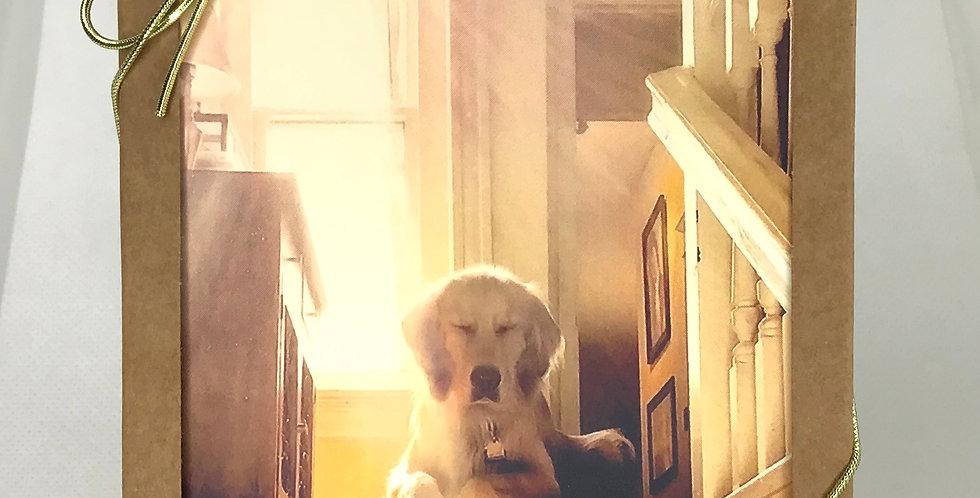 'Zen Dog' :  Set of 5 Note Cards