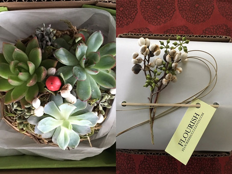 Succulent/Packaging Workshop @Oracle