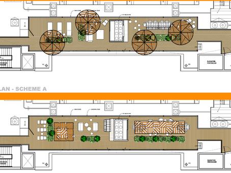 Roof Deck Initial Design Concepts