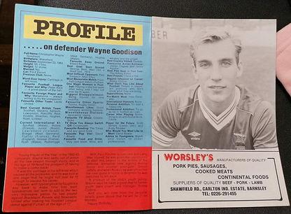Profile on Wayne Goodison.jpg