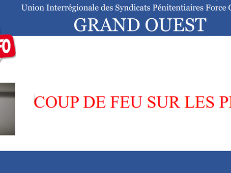 PREJ de Nantes : Coup de feu sur les PREJ !!