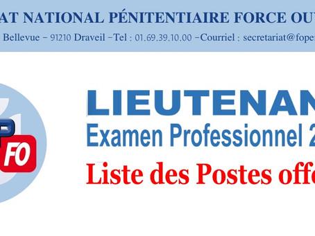 Lieutenant Examen Professionnel 2020 : Liste des postes offerts