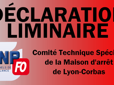 Prison de Lyon-Corbas : Déclaration liminaire du CTS du 17 Février 2020