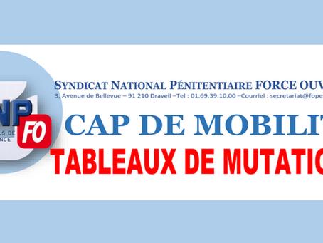 CAP de mobilité : Tableaux de mutations