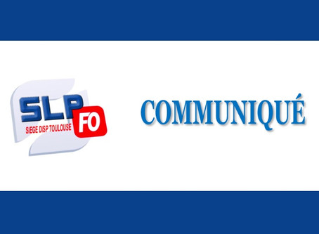 DISP Toulouse : Comité Technique Spécial