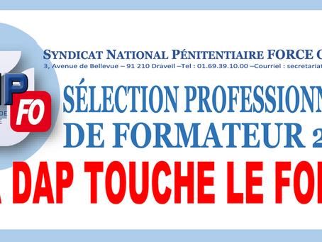 Sélection Professionnelle de Formateur 2018 : La DAP touche le fond !