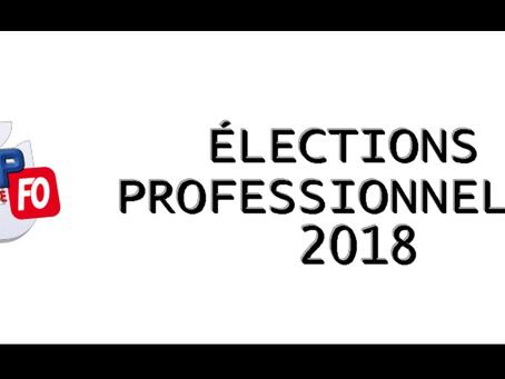 DISP Toulouse : Élections professionnelles 2018