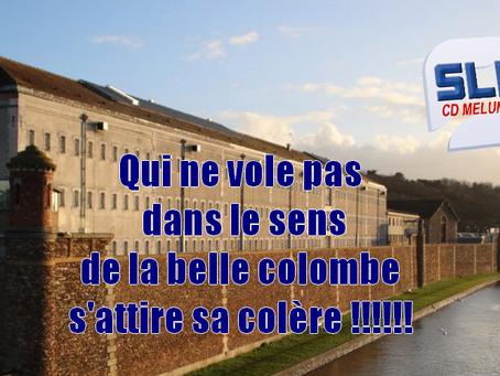 Prison de Melun : Qui ne vole pas dans le sens de la belle colombe s'attire sa colère !!!!!!