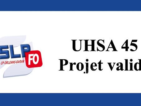 Prison d'Orléans-Saran : UHSA 45 Projet validé