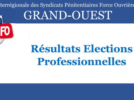 D.I de Rennes : Résultats élections professionnelles