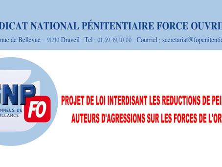 Projet de loi interdisant les réductions de peine aux auteurs d'agressions sur les forces de l'ordre