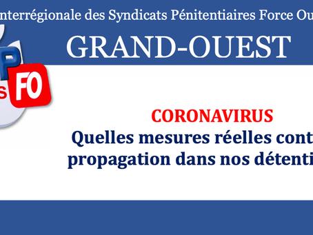 DI de Rennes : Coronavirus, quelles mesures réelles contre sa propagation dans nos détentions ?