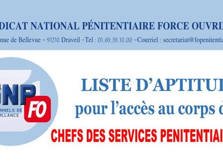 Liste d'aptitude pour l'accès au corps des chefs des services pénitentiaires