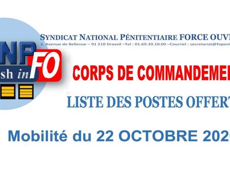 Corps de commandement : Liste des postes offerts Mobilité du 22 Octobre 2020