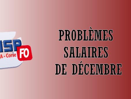 DI Paca-Corse : Problèmes salaires de Décembre