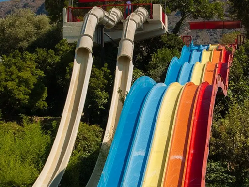 """""""Summary Judgment Found to be Entirely Inappropriate"""" - Dia v Calypso Theme Waterpark, 2021 ONCA 27"""