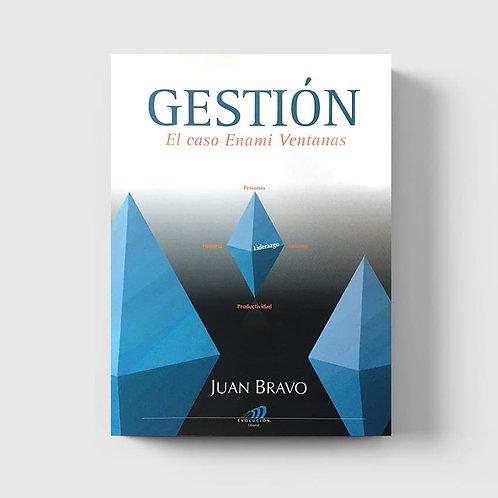 Gestión, el caso Enami Ventanas (versión impresa)