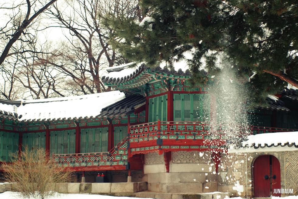 창덕궁의 겨울
