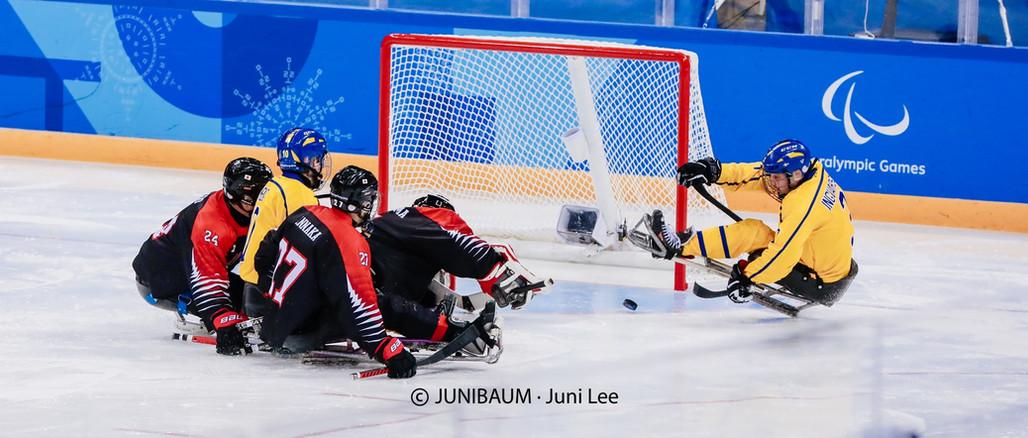 Para Ice Hockey