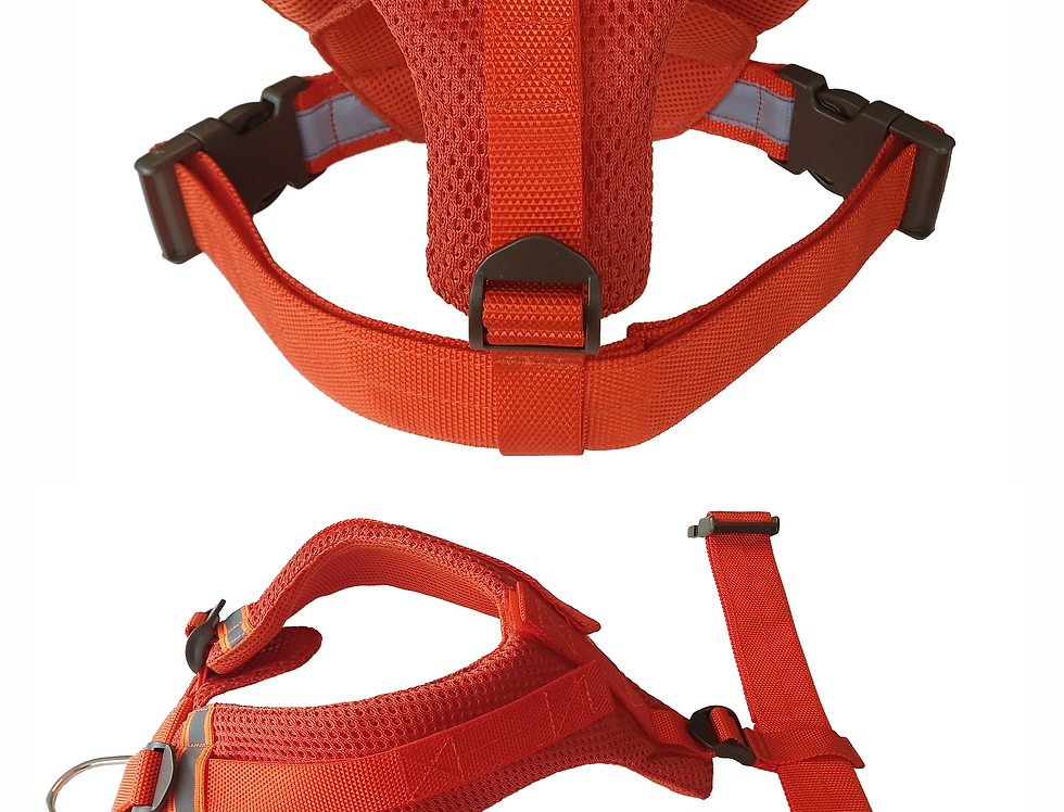 SAR Tracking Harness
