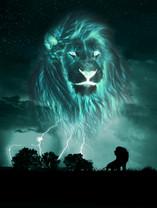 'KING