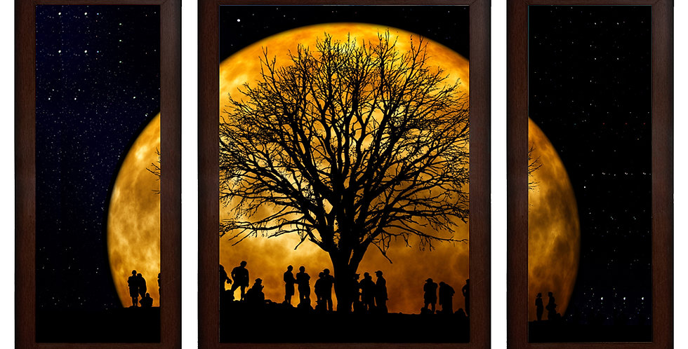 Moon's Shadow MDF Wall Art (13.5 x 24 x 0.75 Inch , Set of 3)