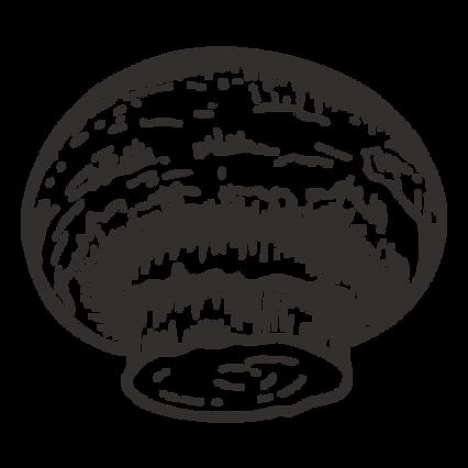Skizzieren Knopf-Pilz