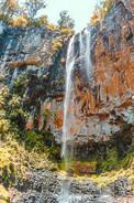 Purling Brook Waterfall Australia