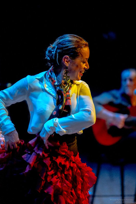 flamenco12_edited.jpg