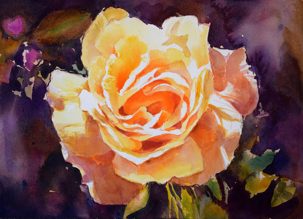 Rose in sunlight (Sold)