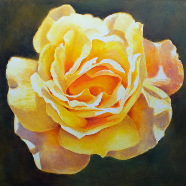 First rose of May (SOLD)