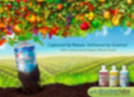 IntraMax all in one supplement