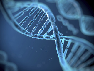 Are You a Byproduct of Your Genes?