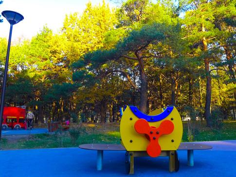 Покрытие в парке Аршиновский.jpg
