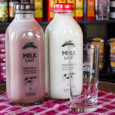 milk.jpeg